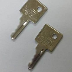 King Gate spare keys
